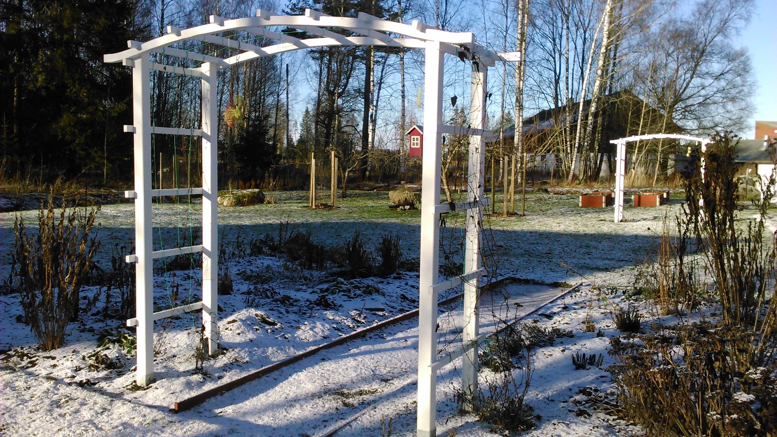 Min vinterträdgård